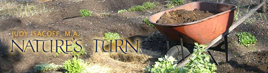 Nature's Turn: Judy Isacoff - Environmental Education & Arts in Education Programs